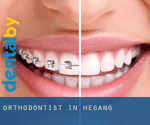 Orthodontist in Hegang