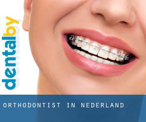 Orthodontist in Nederland