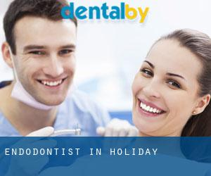 Endodontist in Holiday