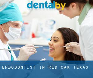 Endodontist in Red Oak (Texas)