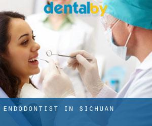 Endodontist in Sichuan