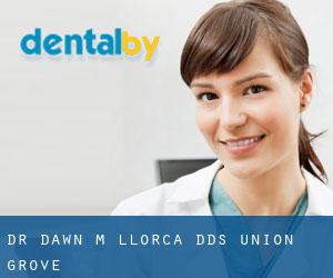 Dr. Dawn M. Llorca, DDS Union Grove